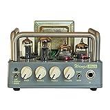 BIYANG Wangs Guitar Amplifier Mini 5 Powerful 5 Watt All Tube Amp Head with 12AX7 12BH7 6Z4 Tubes (Mini 5)