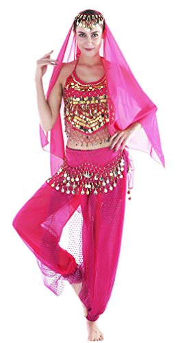 Seawhisper Adult Genie Costume Belly Dancer Costumes for Women Hot Pink