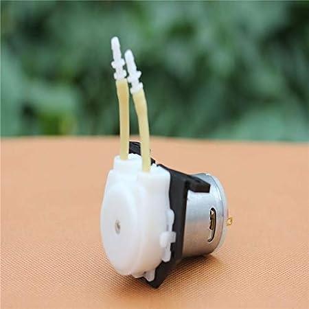 12V Peristaltische bomba bomba dosificadora Tubo flexible de las bombas de la cabeza para Aquarium Lab Aquarienwasser
