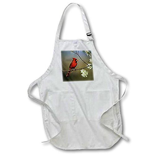 3D Rose Northern Cardinal Male on Flowering Serviceberry Tree-Illinois Medium Length Apron-with Pouch Pockets, 22 x 24""