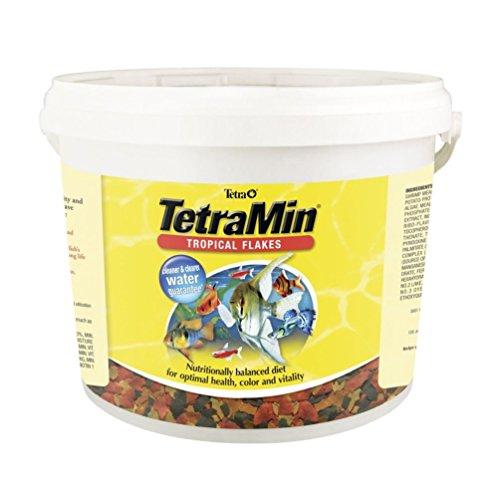 TetraMin Tropical Flakes 4.52-Pound