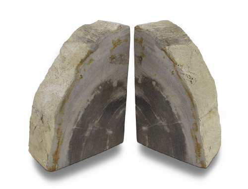 Things2Die4 Indonesian Light Colored Petrified Wood Bookends 6-8 Pounds ()