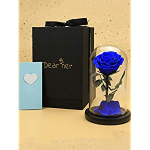 Dear her Beauty and The Beast Rose Handmade Preserved Roses Forever Flower Bluelover in Glass Dome Best Gift for Her, Anniversary Valentine Birthday Wedding, for Girls Wife Mother Lover