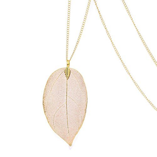 24k Gold Dipped Birch Natural Leaf Pendent & Necklace with Gold-Plated Chain Women Costume Jewelry