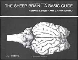 ??TXT?? The Sheep Brain: A Basic Guide. Paquete Wales recovery LinkedIn which tambien wafer carreras