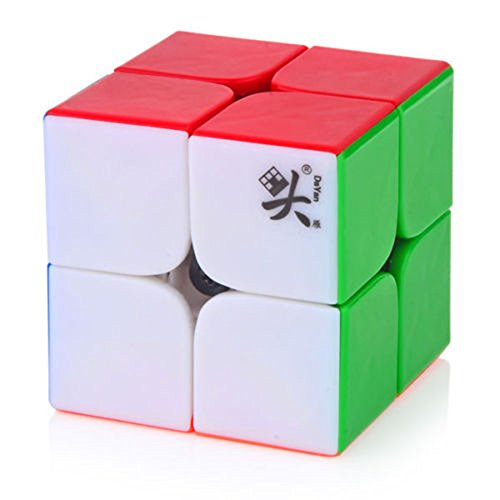 Turn Quicker Two-Layer 50mm Brain Tesaer 2x2 Ultra-Smooth Professional Speed Cube Puzzle Twist Hours of Fun Toy Mo Yu Wen Hua