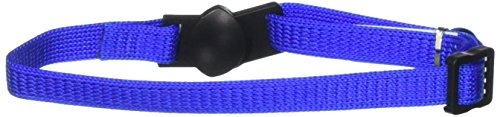 Aspen Cat Bell (Aspen Pet Breakaway Cat Collar 3/8