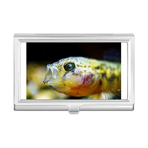Tropical Flat Card - Marine Organism Small Tropical Fish Business Card Holder Case Wallet