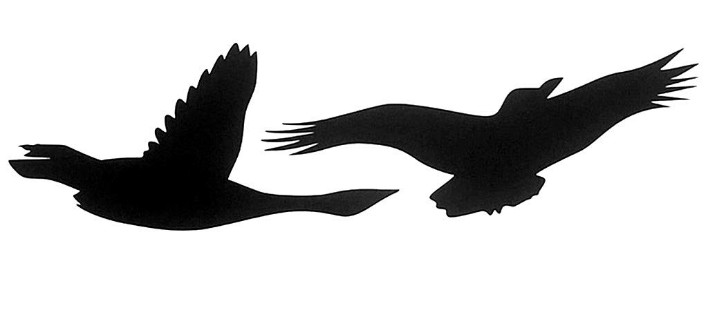Anti-Collision Window Alert Bird Stickers Glass Door Protection Save Birds Window Decals Set of 15 Silhouettes