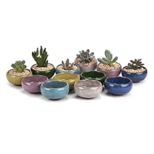T4U 2.5 Inch Ceramic Ice Crack Zisha Serial succulent Plant Pot Cactus Plant Pot Flower Pot Container Planter Full colors Package 1 Pack of 12