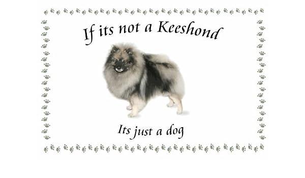 Keeshond - perro flashsellerz Llaveros - si no es: Amazon.es ...