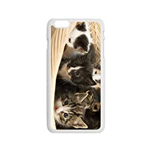 Cat Babies Hight Quality Plastic Case for Iphone 6