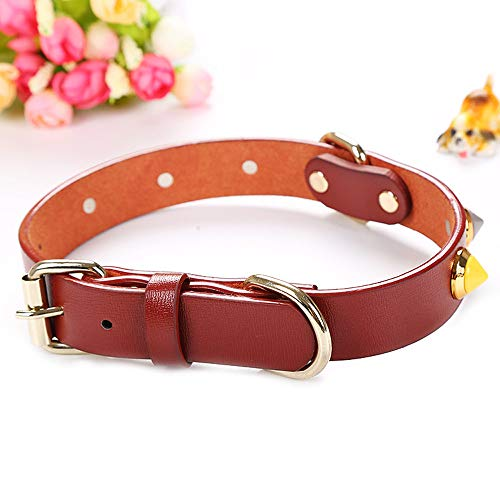 (Hpapadks Pet with Drill Collar,Adjustable Dog Cat Pet Cute Collar Puppy Kitten Necktie Collar Preppy Dog Collars)