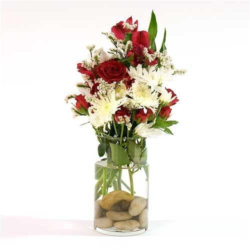 Eastland Cylinder Vases 6
