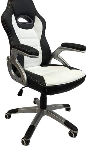 Viscologic Series Gaming Racing Style Swivel Office Chair
