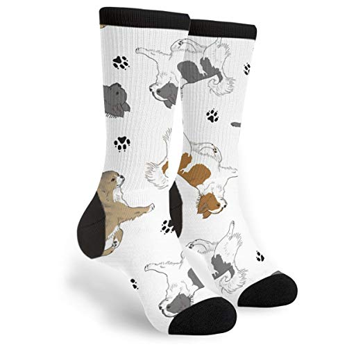 (Long White Hair Chihuahua Footprints Youth Male Mens Boys Teen Kid Unisex Ankle Themed Clothing Gifts Party Clothes Dresses Quarter Dress Mid Calf Knee Crew Socks Calf Knit Hosiery)