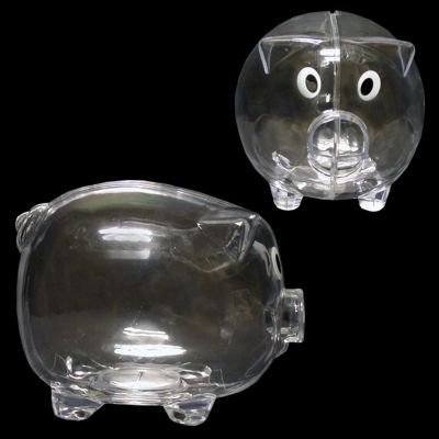 Windy City Novelties Educational Kids Clear Piggy Banks