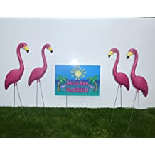 30 Pink Flamingos and 2 (You've Been Flocked) yard signs.