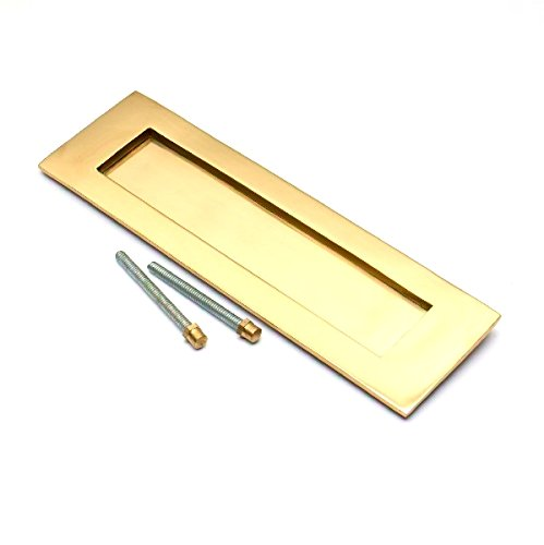 Bulk Hardware BH03589 250 x 75mm (10 inchx 3 inch) Victorian Letter Plate Polished Brass ()