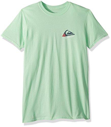 Quiksilver Men's Hibiscus Logo Tee, Mint, (Skate Fit T-shirt)