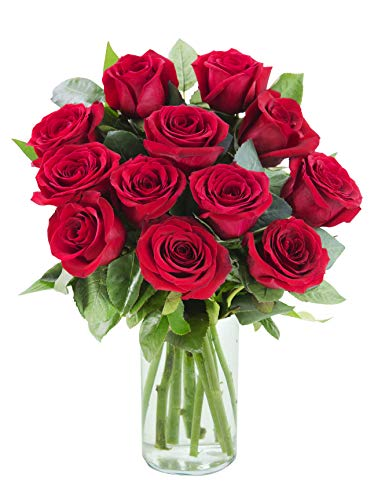 12 Fresh Cut Red Roses by Arabella Bouquets with Free Glass Vase | Purchase by Monday 10 am EST to get Deliver on Wednesday Before noon