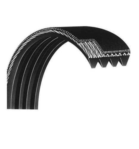 Johnson Health Technologies Poly V Drive Belt 6 Ribs 176559 Works with Proform Epic Gold's Gym Upright Bike Elliptical