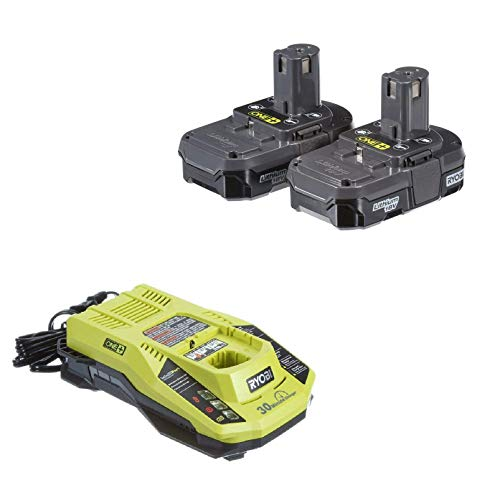 Ryobi 18V P117 Dual Chemistry IntelliPort Charger & Two 18 Volt P102 ONE+ 18-Volt Lithium-Ion Compact Battery (Bulk (Compact Nimh Battery)