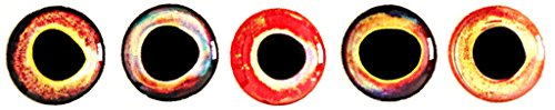 Brule 3-D Hard Epoxy Eyes (Combo4, 5mm)
