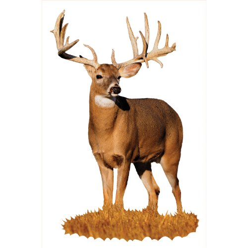Mossy Oak Graphics ( 22007-C-M 'Deer Whitetail Buck with Left Drop Tine' Cut-Out Indoor Graphics