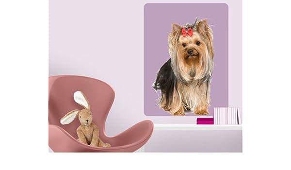 DCS22 - Yorkshire Terrier perro para pared de tamaño natural ...