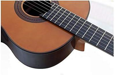Guitarra Clásica Tatay C320 Iniciación, Palosanto: Amazon.es ...