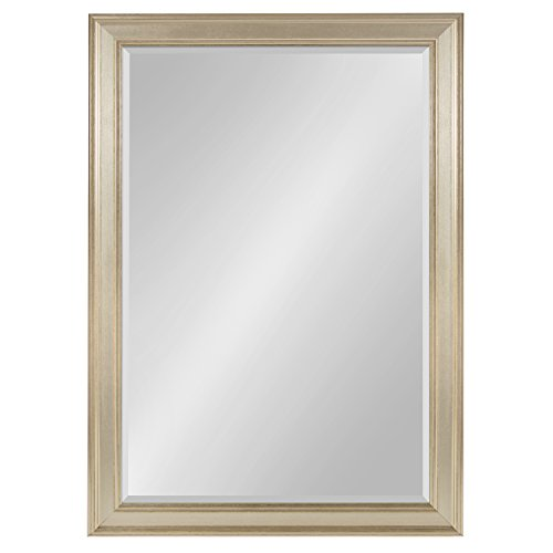 igan Large Framed Rectangle Wall Mirror, 29 x 41 Champagne ()