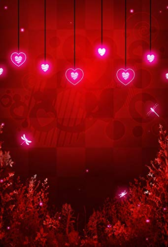 Leyiyi 3x5ft Valentine's Day Photography Backdrop Black Stripe Hanging Virtual Luminous Heart-Shaped Light Flying Sparkling Pink Dragonfly Red Grid Background Couples Confessions Ornaments