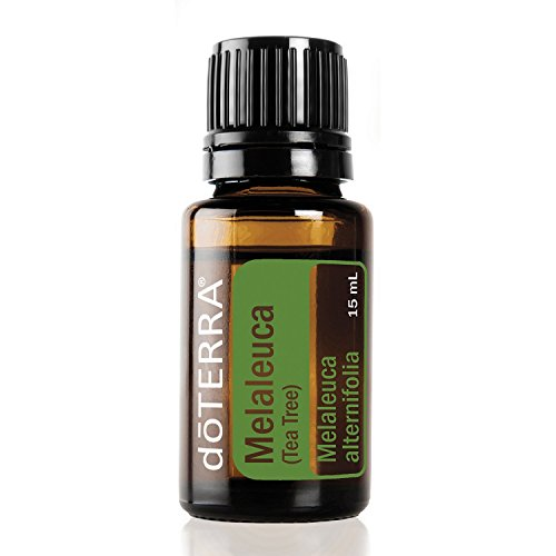 doTERRA Melaleuca Essential Oil - Promotes Healthy Immune Function, Seasonal Protection, Cleansing and Rejuvenating Effect on Skin; For Diffusion, Internal, or Topical Use - 15 ml by doTERRA