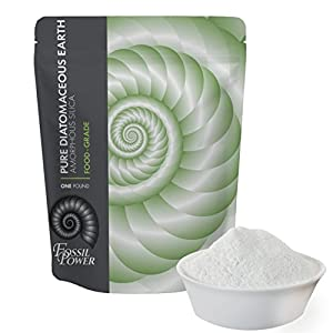 Diatomaceous Earth Food Grade Powder - 1 lb. Bulk Resealable Bag - Safe for Human and Pet Consumption or Outdoor Uses with Dust Applicator - Detoxify Your Body Inside and Out - Fossil Power Brand