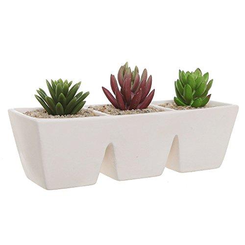 Off white unglazed ceramic rectangular 3 section succulent plant pot herb ebay - Rectangular succulent planter ...