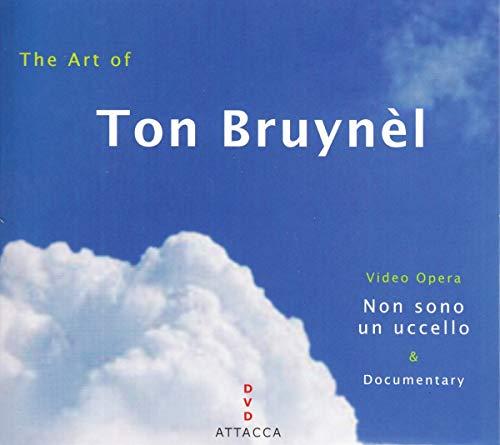 Art of Ton Bruynel