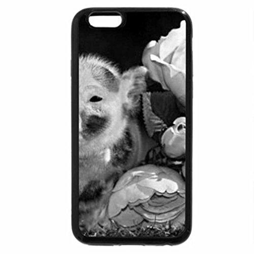 iPhone 6S Plus Case, iPhone 6 Plus Case (Black & White) - piglet and roses