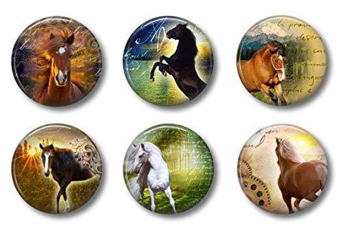 horse refrigerator magnets - 4