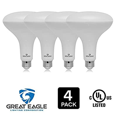 Great Eagle LED BR40