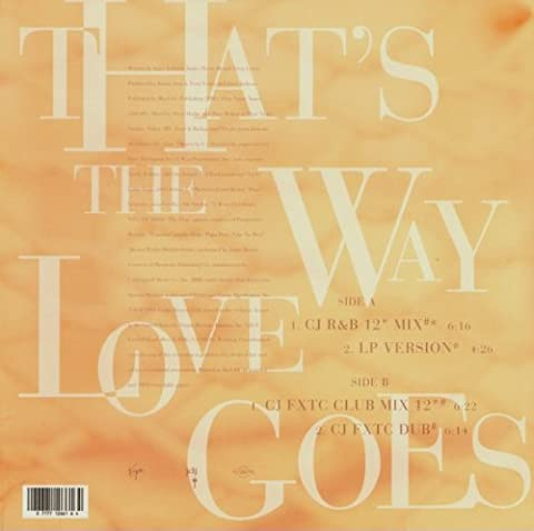Janet Jackson / That's The Way Love Goes (Janet Jackson 12)