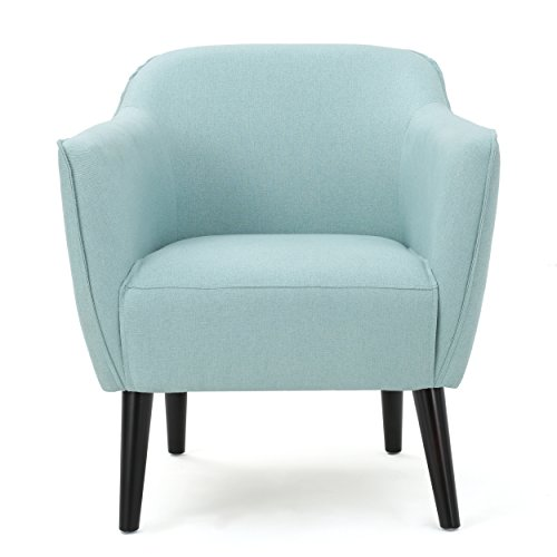 Christopher Knight Home 300035 Alphonse Arm Chair, Light Blue ()
