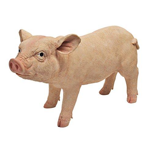 Pig Stone - 1