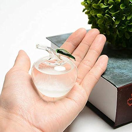Sturmglas Wettervorhersage-Glaswasser-Flaschen-Unterseiten-Weihnachtstischschmuck f/ür Innenministerium DirkFigge Storm Glass