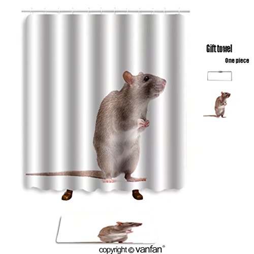 vanfan bath sets with Polyester rugs and shower curtain cute domestic brown rat standing n a tiptoe 6 shower curtains sets bathroom 48 x 78 inches&23.6 x 15.7 inches(Free 1 towel and 12 (Turnout Tip)