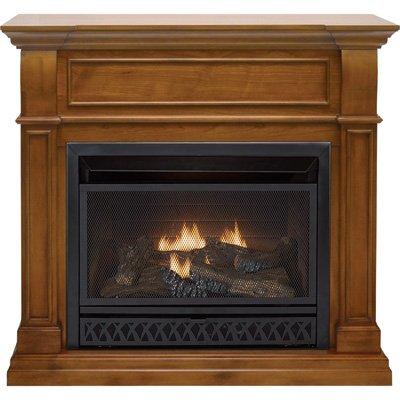 ProCom Dual Fuel Vent-Free Fireplace - 26,000 BTU, Apple Spice Finish, Model# FBD28T-J-AS