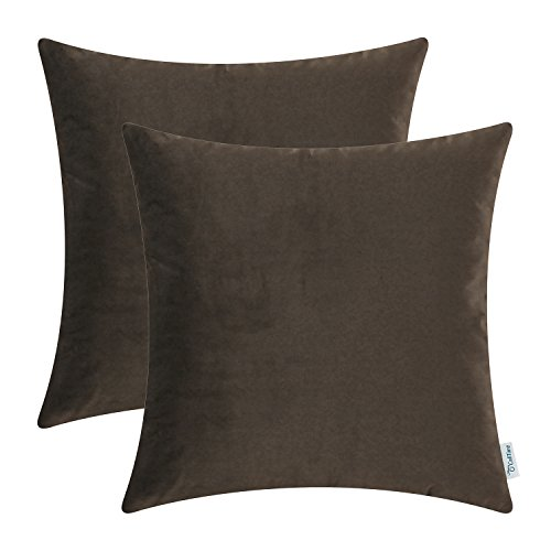 Brown Velvet Pillow - CaliTime Pack of 2 Cozy Throw Pillow Covers Cases for Couch Sofa Bed, Solid Ultra Soft Velvet Faux Cashmere, 20 X 20 Inches, Coffee