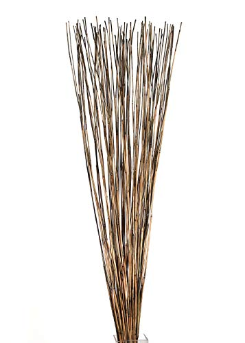 Green Floral Crafts Decorative Reed Sticks Approximately 4' by 1/16
