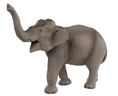 Asian Elephant Animals - Safari Ltd Wild Safari Wildlife – Asian Elephant – Realistic Hand Painted Toy Figurine Model – Quality Construction from Safe and BPA Free Materials – For Ages 3 and Up
