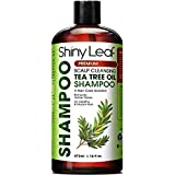 Tea Tree Oil Shampoo, Sulfate Free Anti-dandruff Shampoo with Essential Tea Tree Oil, Deep Cleansing Formula, Scalp Remedy for Soft and Smooth Hair, Gets Rid of Head Lice,16 fl. Oz.